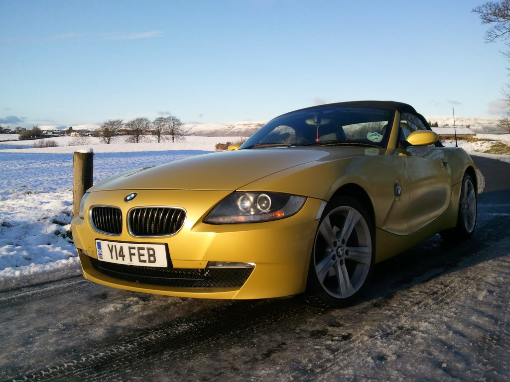 New Year Mods Z4 Forum Com